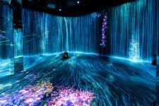 [On the Radar]: teamLab Borderless Shanghai, a Digital Wonderland of a Museum