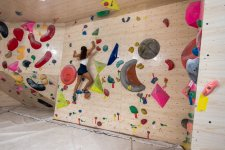 Climbing the Walls: Five Gyms for Rock Climbing and Bouldering