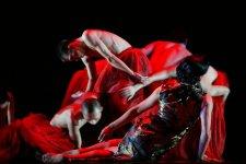 Dance Freaks! Three Amazing Dance Shows Happening In October