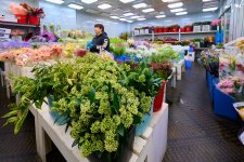 Petals, Pots & Peonies: 3 Flower Markets In Shanghai