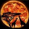 Pizza Safari  on SmartShanghai
