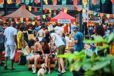 Party Pictures: Jing'an Courtyard Festival